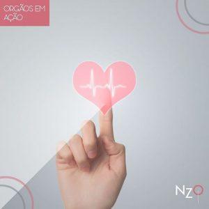 img_VFS_OrgaosEmAcao-300x300 Órgãos em Ação